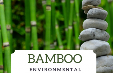 Organic Bamboo Pajamas is the Perfect Gift for Women