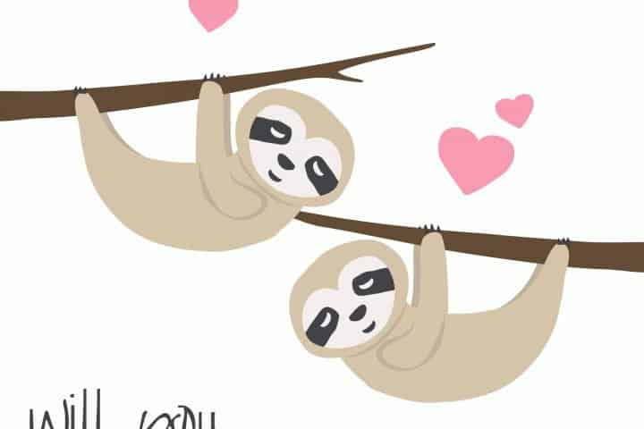 best Sloth gifts